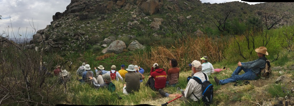 A moment of Zen as hikers listen to the chattering desert wrens and the traveling waters of Big Spring in a desert Oasis.